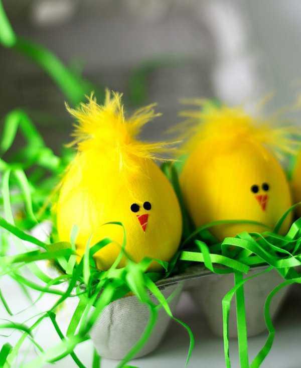 Пасхальные жёлтые цыплята из яиц